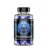 Reg Pharm Tribulus 90% 750 мг 90 капс